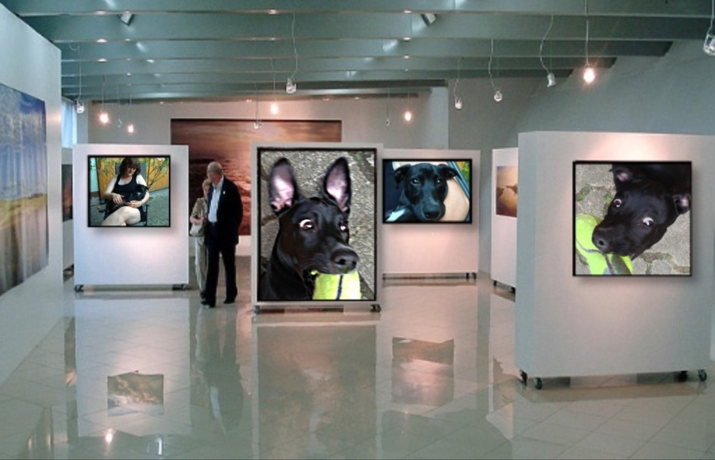 Luzy Gallery